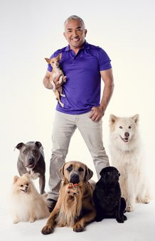 "Cesar Millan ""Once Upon A Dog"" Live on Tour 2018"